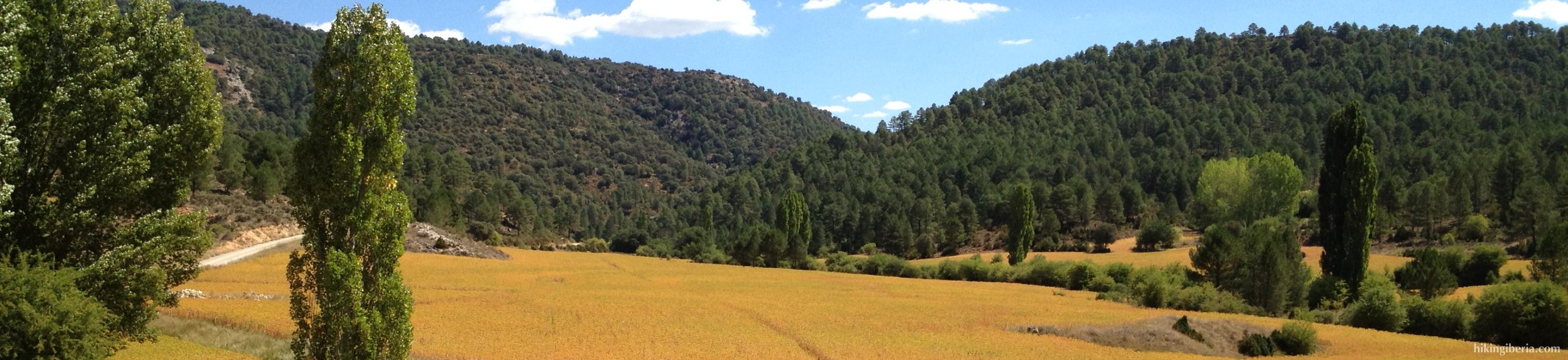 Arroyo del Peral