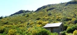 Berghütte von El Cuadro