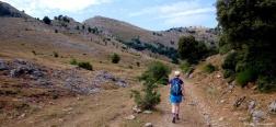 Camino de Las Calicatas