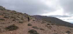 Trail to Punta la Marmora