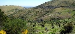 Afdaling naar de Prado del Valle