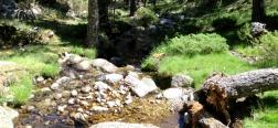 Arroyo de las Guarramillas