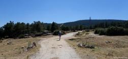 Trail near Moralzarzal