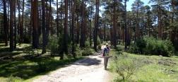 Trail to the Cerro Pelado