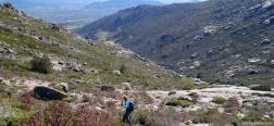 Afdaling naar de Arroyo de la Gargantilla