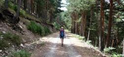 Trail on the way back to La Pradera de Navalhorno