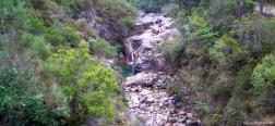 Der Fluss Homem