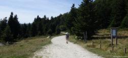 Schotterweg zur Berghütte von Callau