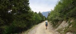 Schotterweg auf dem Abstieg vom Collado de Conflent