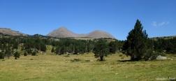 Grüne Wiese in der Nähe der Berghütte von la Balmeta