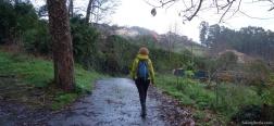 Path to Pedreira