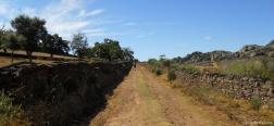 Trail near dolmen El Mellizo