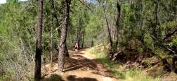 Pad in de Sierra de las Cuerdas