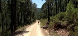 Trail close to the River Cabriel