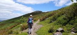 Trail on the Cuerda de las Berceras
