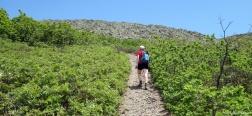 Ascent to the Morro de la Casa Yerma