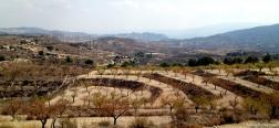 Uitzicht op de Barrancos de Gebas