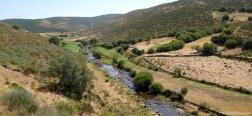River Tormes