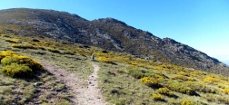 Pad vanaf de Puerto del Pico