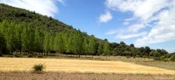 Near Pozancos