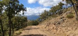 Trail close to the Cachiporrilla