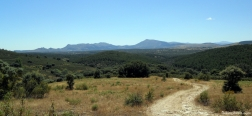 Trail back to Berzosa del Lozoya