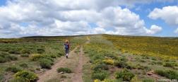 Pad naar Pico Colgadizos