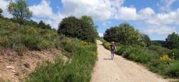 Trail near Robregordo