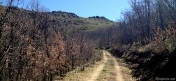 Pfad nach El Portachuelo