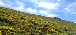 Aufstieg zu La Pedriza