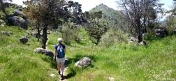 Climb towards the Almenara