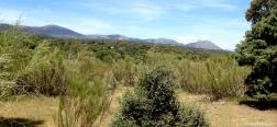 View from the Alto del Pinar