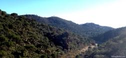 River Cofio