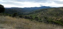 Lorenzo Valley