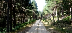 Onverharde weg langs de Río Tejero