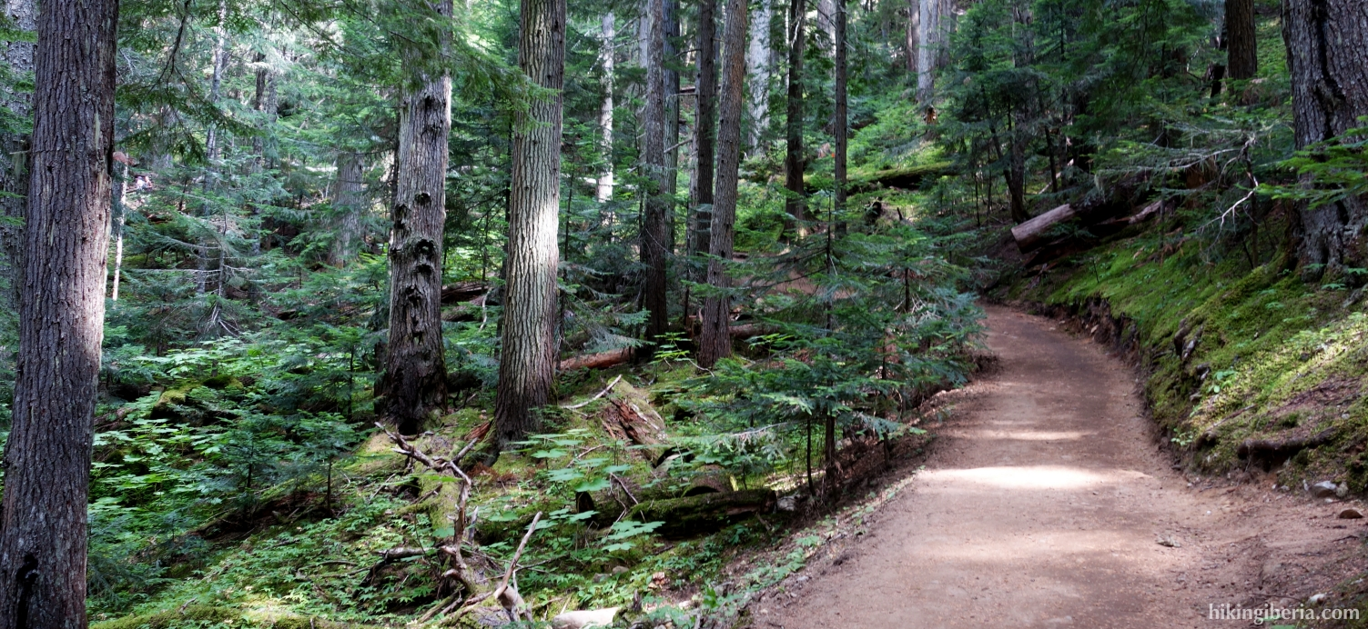 On the trail to the Garibaldi Lake