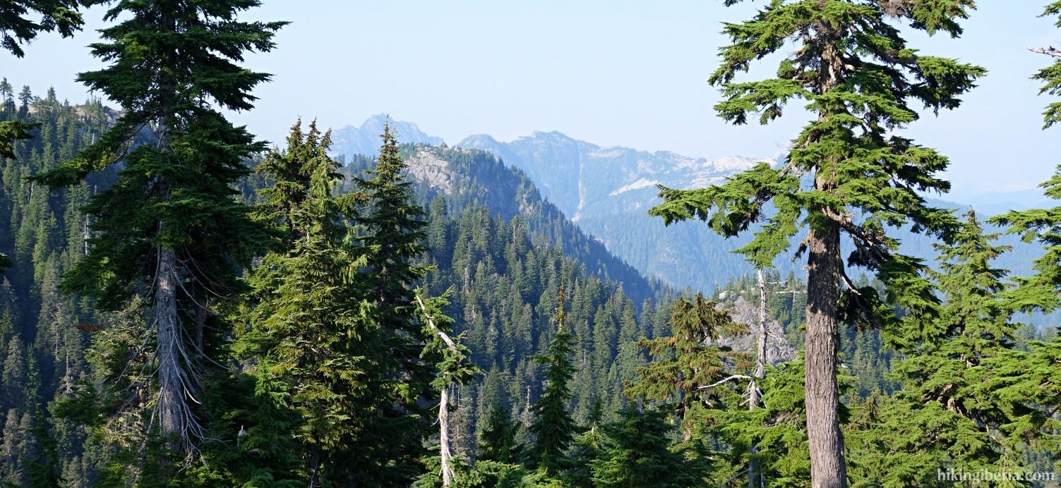 Vista desde el Grouse Mountain
