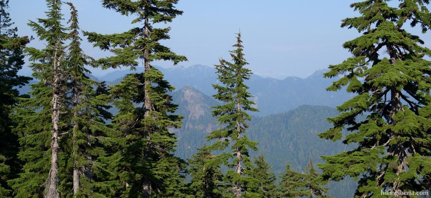 Uitzicht vanaf de Grouse Mountain