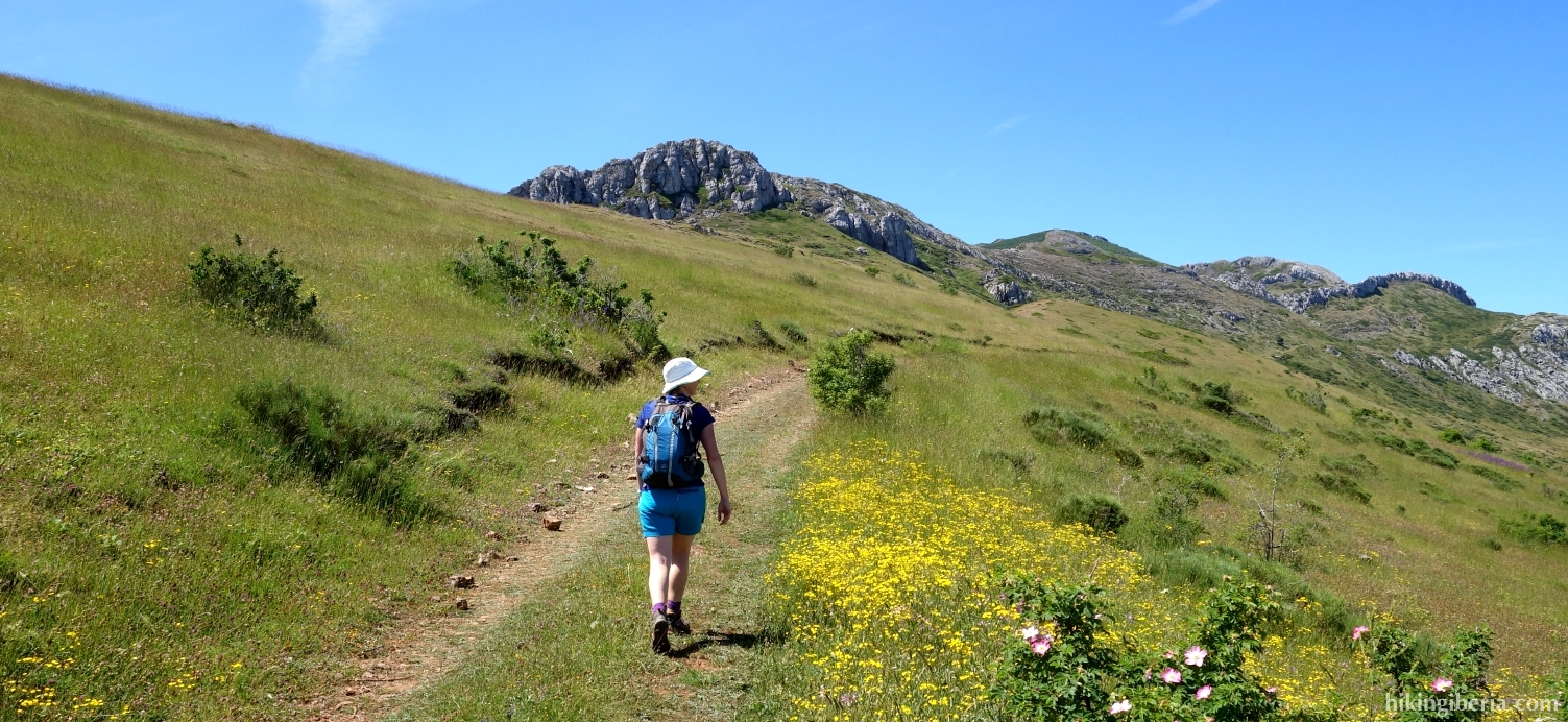 Path near the Puerto de Aralla