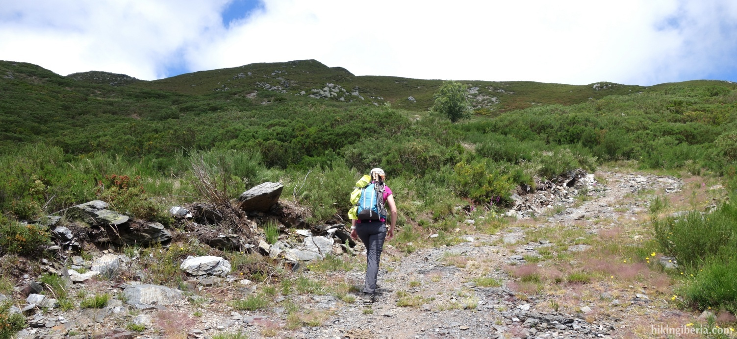 Trail parallel to the Arroyo del Couso