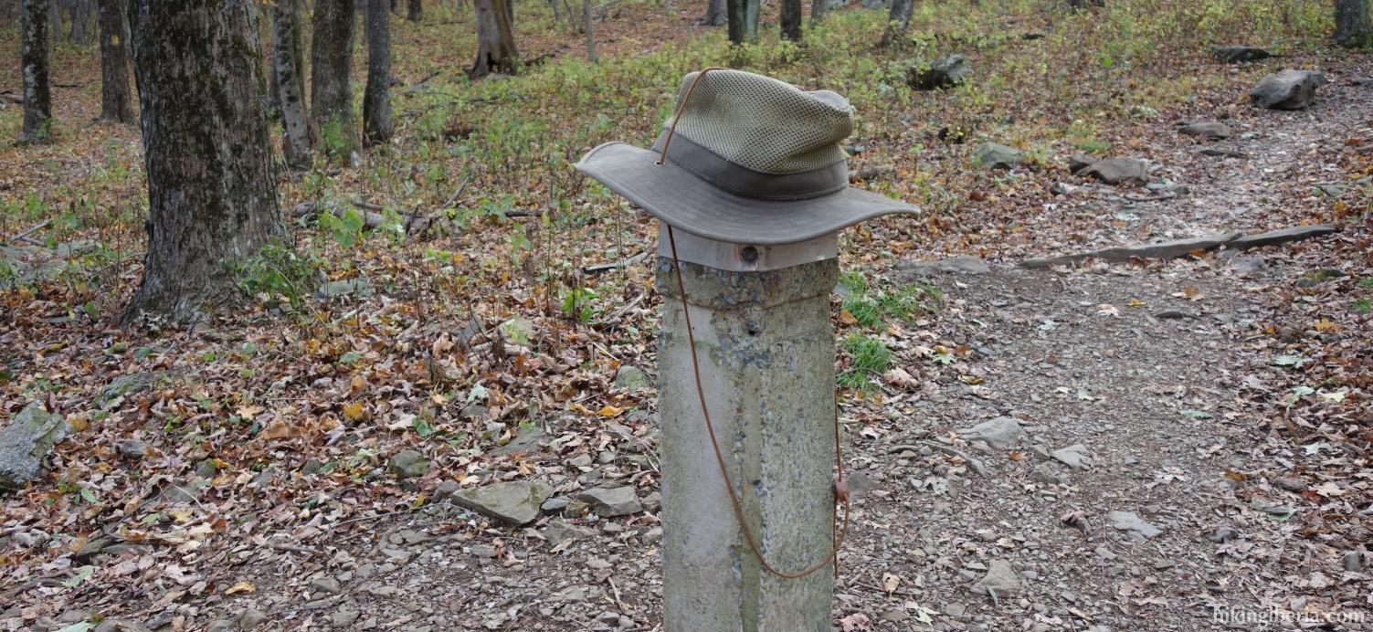 On the Skyland-Big Meadows Horse Trail