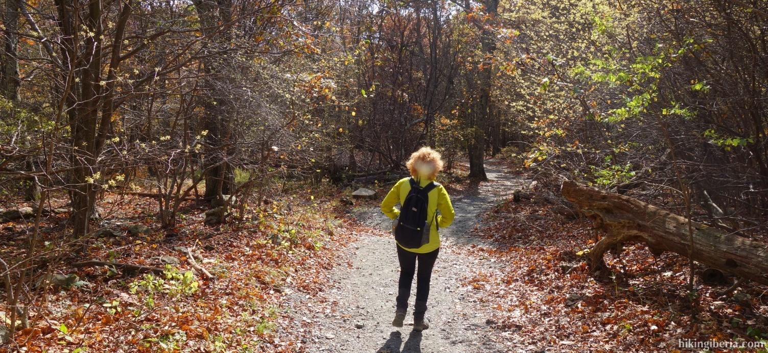 Op de Upper Hawksbill Trail