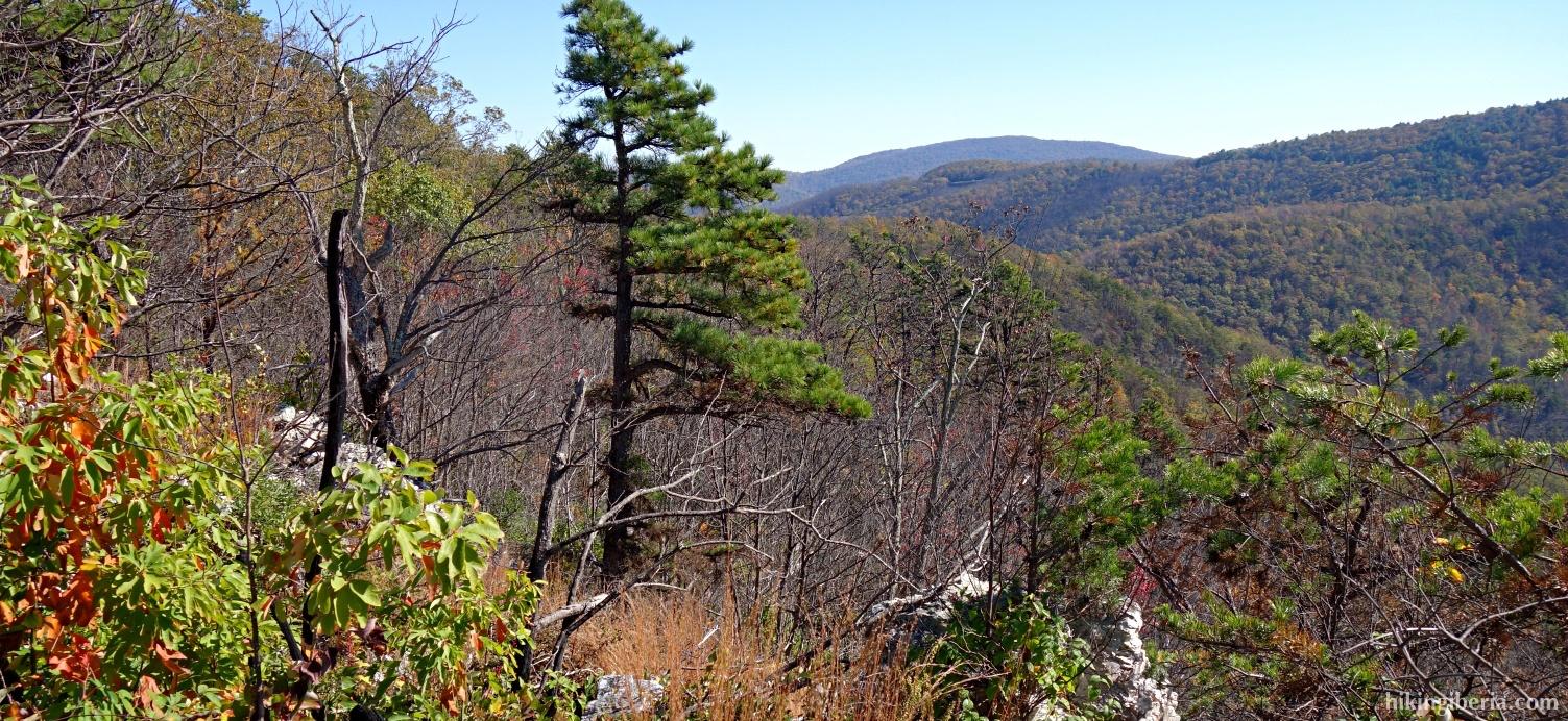 Auf dem Brown Mountain Trail