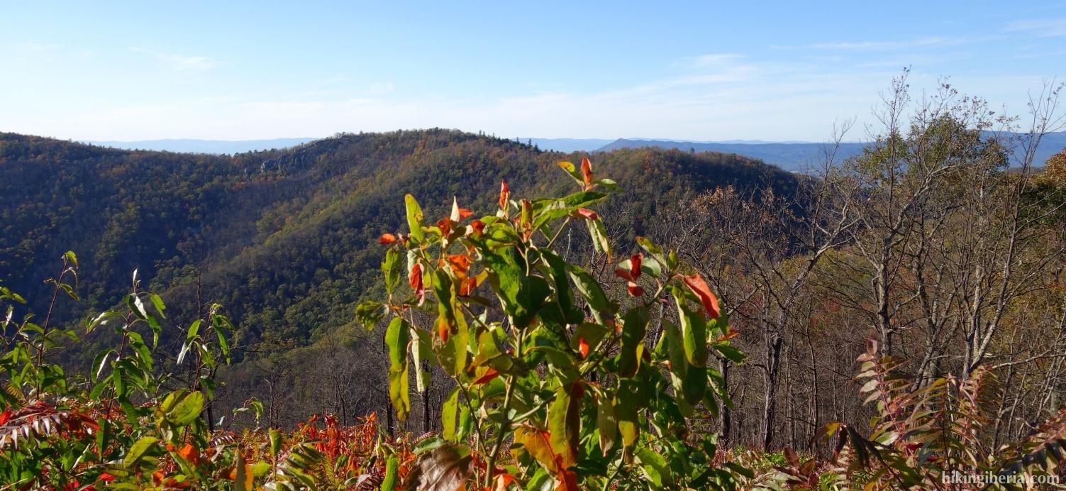 Vistas desde el Brown Mountain Overlook