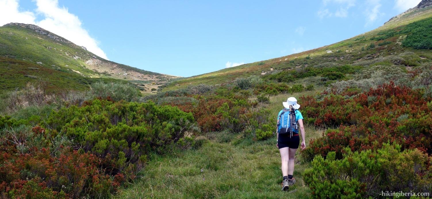 Ascenso al Collado entre Hontanillas y Peña Carazo