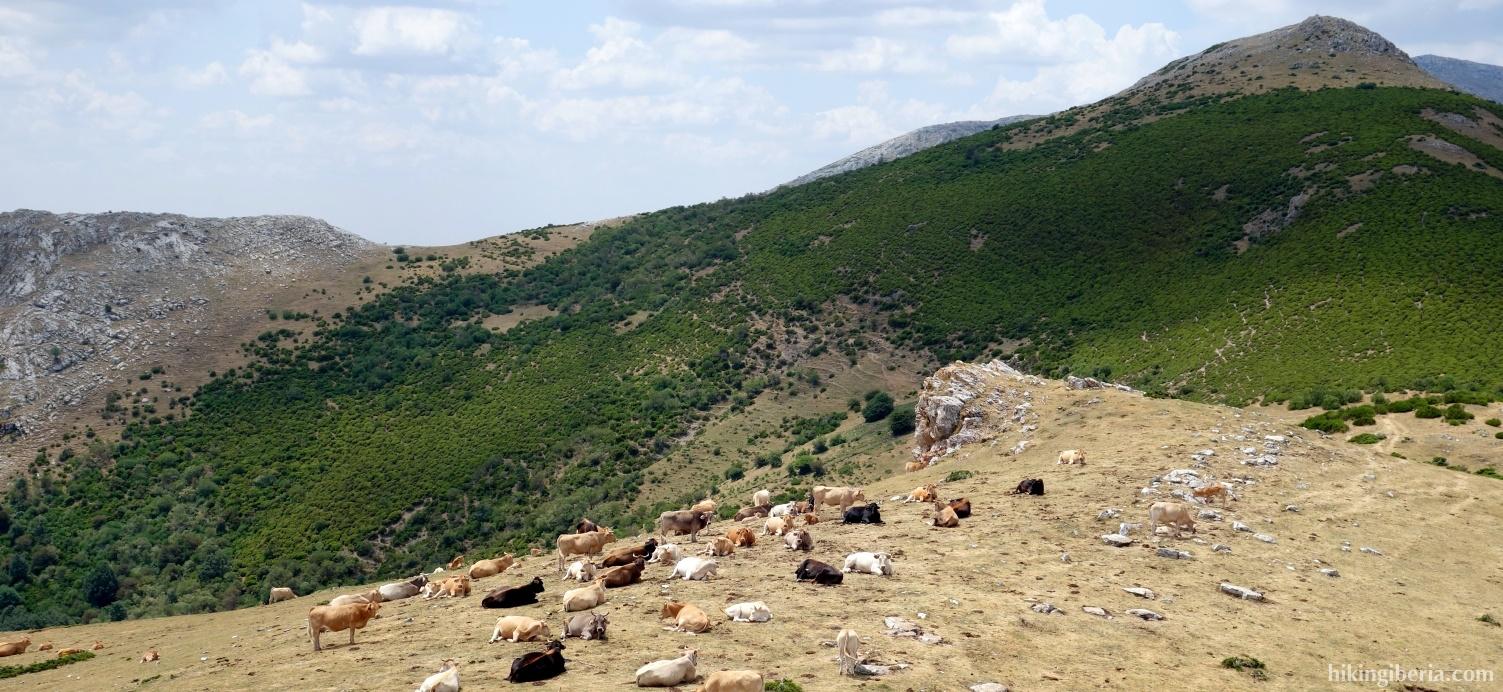 Afdaling vanaf de Pico Almonga
