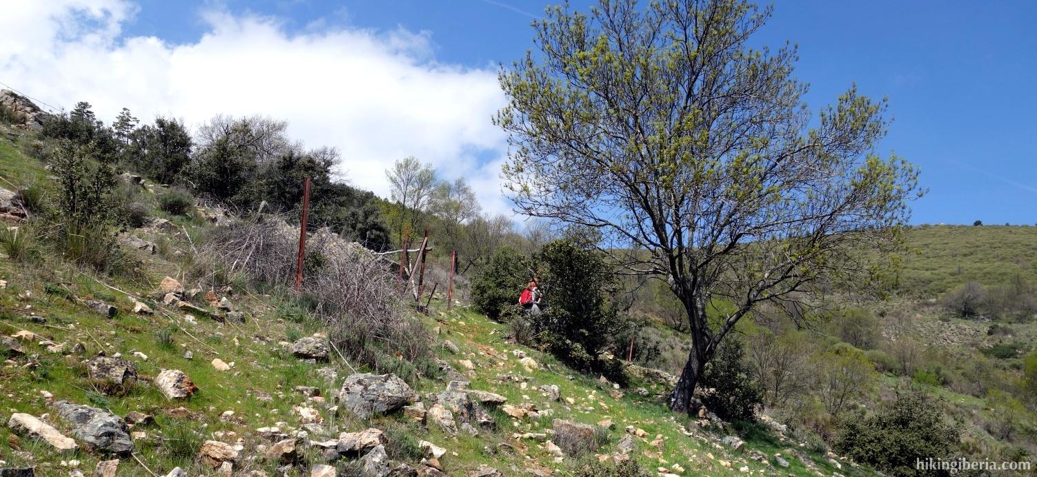 Climb to the Loma del Abantos