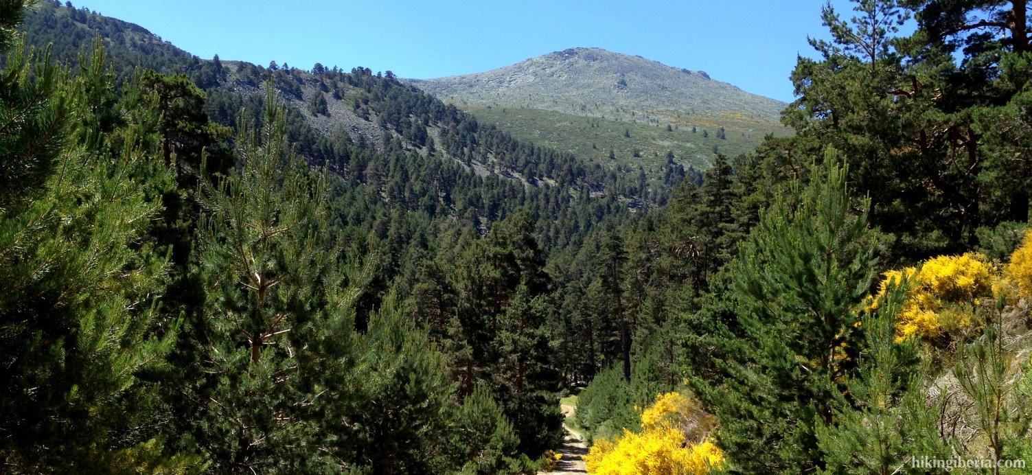 High valley of Lozoya