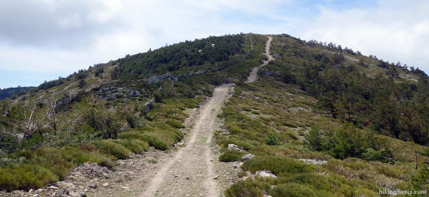 Trail to the Peña del Águila