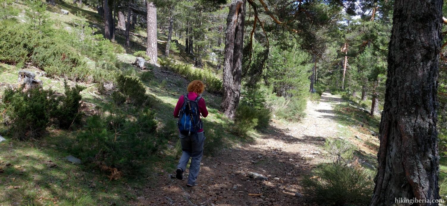Abstieg über der Ladera del Infierno